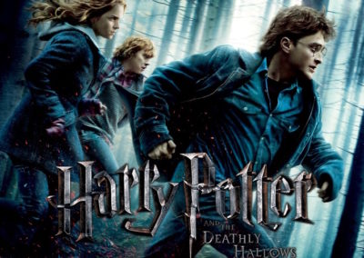 Harry Potter and the Deathly Hallows Part 1 (2010) Drinking Game