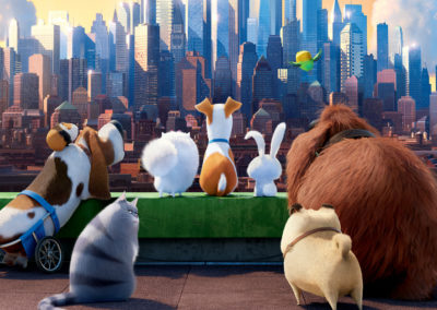 The Secret Life of Pets (2016) Drinking Game