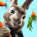 Peter Rabbit Drinking Game