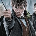 Fantastic Beasts The Crimes of Grindelwald Drinking Game