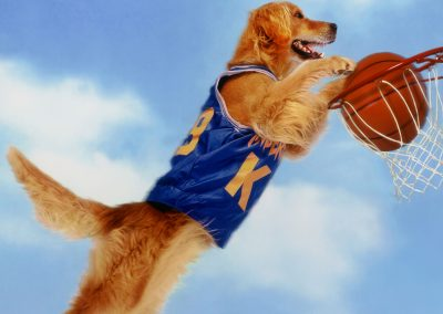 Air Bud (1997) Drinking Game